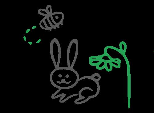 Happy-English-Summer-Happy-english-conill